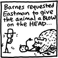 Mr. Barnes & the Bear (Henniker)