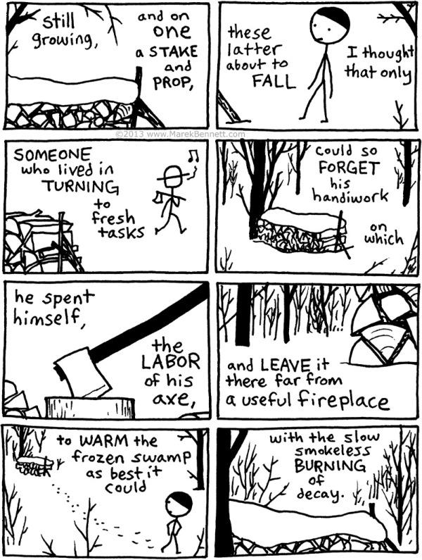 Poetry-Frost-TheWood-pile-05-www.MarekBennett.com