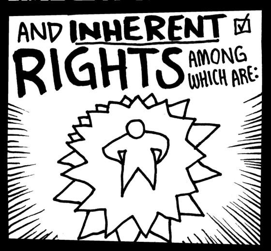 NH-CONSTITUTION-02-DETAIL-www_MarekBennett_com